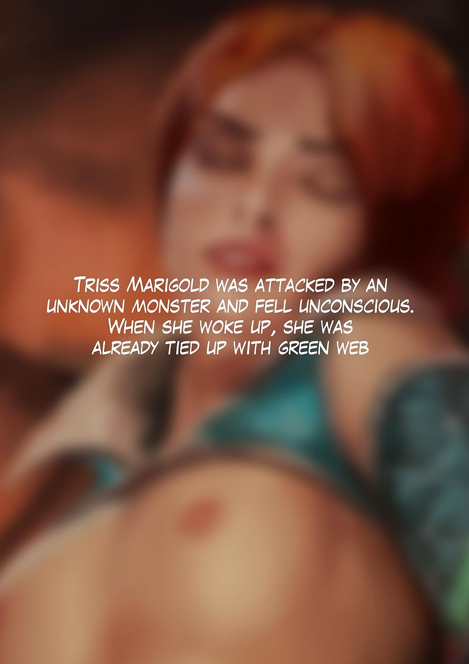 Triss Respecting Pretend to - fidelity 2