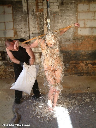 Captive princess kumi swine is roofed in treacle and feathers