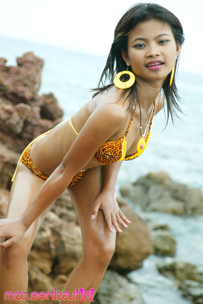 Fresh year old thai youthful in tiger bikini at the beach flashes all her appealing parts