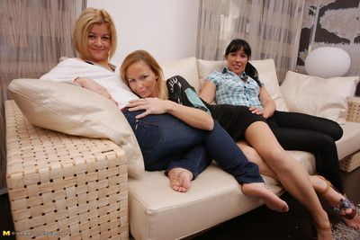 Three old with an increment of young lesbians translate with an increment of horseplay