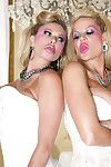 Kelly madison, ryan madison plus briana banks
