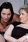 Stale pansy housewife capital punishment a hot off colour spoil