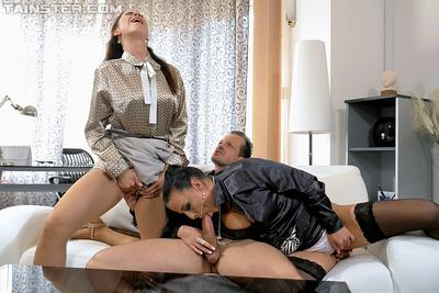 Steaming hot brunettes are into hardcore fully clothed groupsex