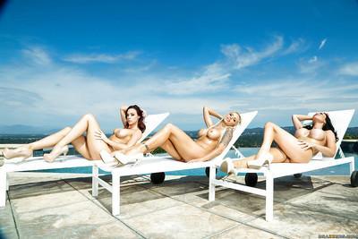 Busy MILFs Chanel Preston, Jasmine Jae and Nina Elle posing together