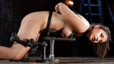 Naughty Indian BDSM model Darling Deicide undergoes box over head training