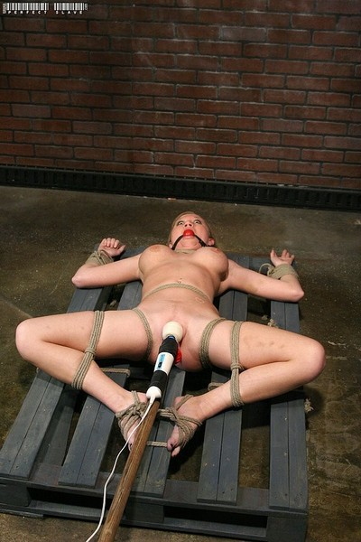 Madison scott golden-haired her pussy vibrated although bound in ropes
