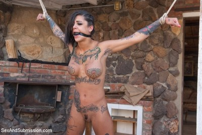 Tattooed lass receives bound and ass owned