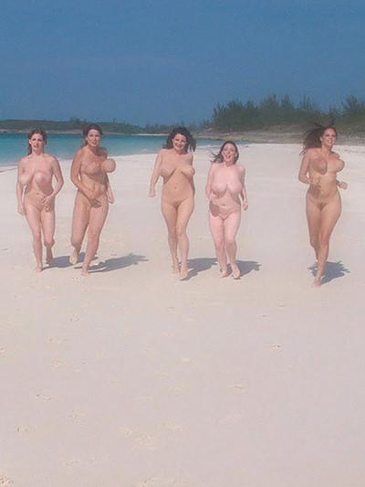 الشاطئ الهادئ