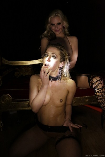 Sheena shaw and phoenix marie anal playing