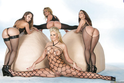 Four jaw-dropping wild MILFs with amazing fannies posing in nylon outfits
