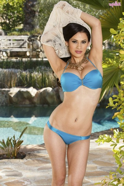 Vanessa veracruz is a extraordinary species of graceful cutie