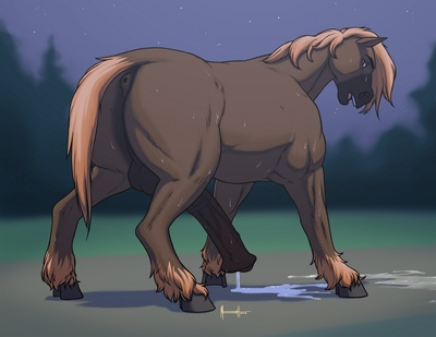 A Horse Transformation Tale