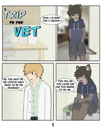 A Trip To The Vet