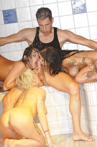 Triple sexually excited beauties have drenched and vehement groupsex with a studly mate