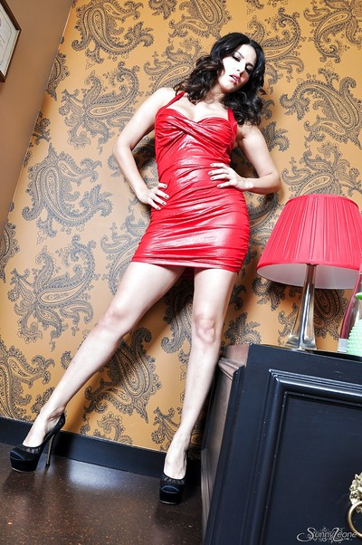 Desirable brunette hair princess has no thing lower than her hawt red clothing