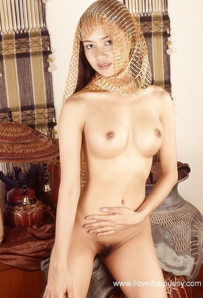 Playing with dick Oriental angel teases her bushy fur pie and major mounds