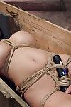 Our ballsy milf survives the box, but in advance of we are done this babe need to show us what sh