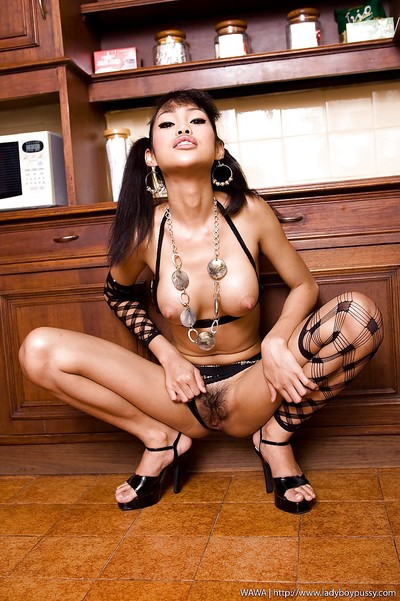 Nasty young Asian ladyboy Wawa moving forward a bottle up her tight butthole