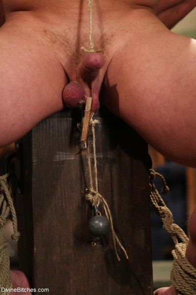 Mistress sophie dee owns your penis