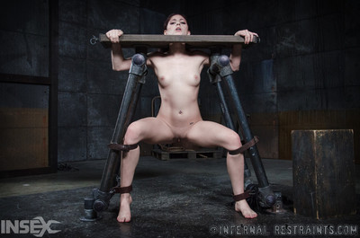 In that place nothing in this world that makes a princess cock cream get pleasure a sybian. the most pow