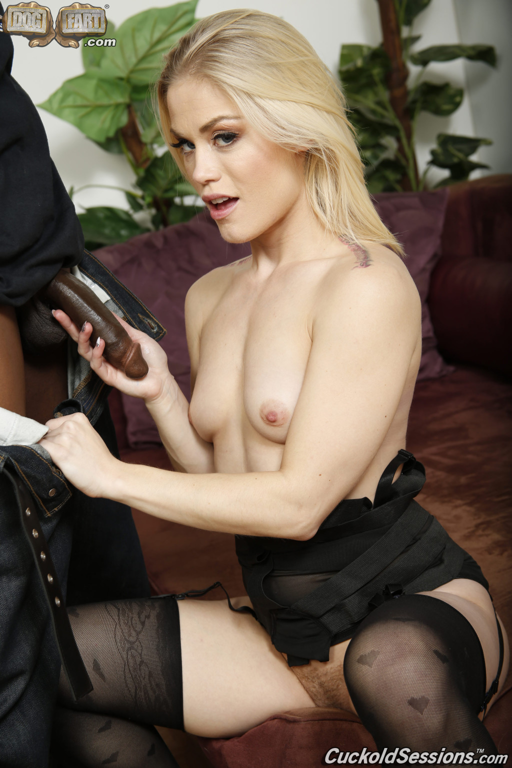 Ash hollywood makes love black horse at the same time as her hubby watches