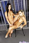 Bree olson added to mandy everywhere hardcore girl on girl divertissement