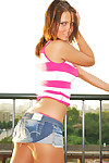 Bailey knox flashing on the roof